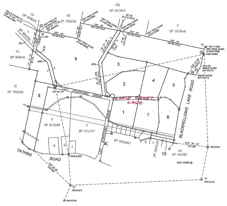 Map show location of proposed road name.