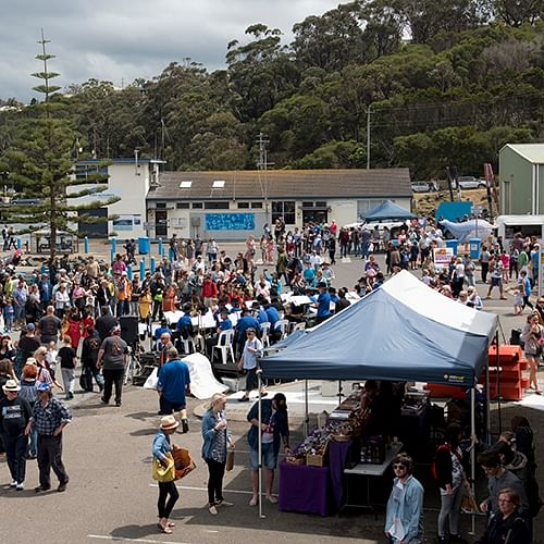 Whale Festival Eden.