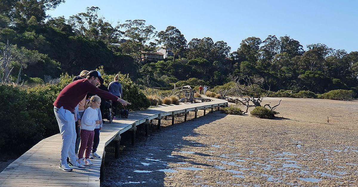 Merimbula boardwalk.