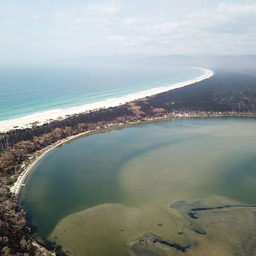 Image of estuary showing the impact of the bushfire.