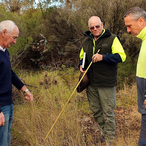 David Boag (Bega Saleyards lessee), Greg Madden (Council�s Vegetation Management Officer) and Kevin Dibley (contractor) discuss the African Lovegrass weed spraying program at the Bega Saleyards.