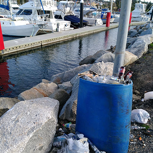 Rangers responded quickly recognising the risk to Bermagui�s famous water ways.
