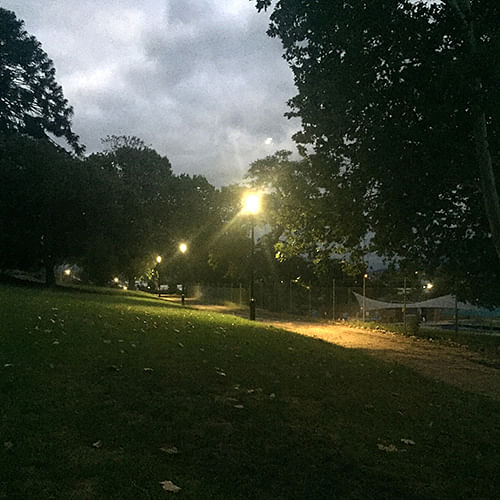 Upgraded lighting at the Bega Park.