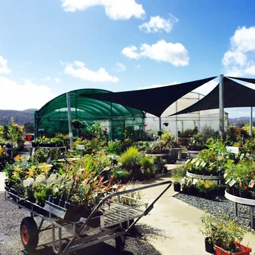 Riverside Nursery and Garden Centre.