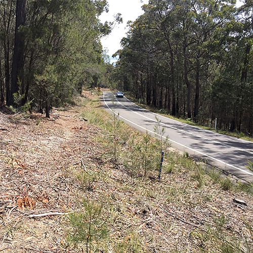 Planning has commenced for a bike path connecting Kalaru and Tathra.