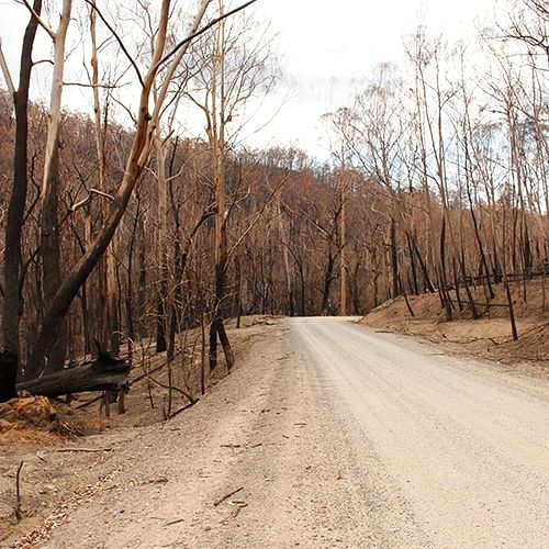 The NSW State Coroner is conducting a series of coronial inquests and inquiries relating to the 2019 20 NSW bushfire season.