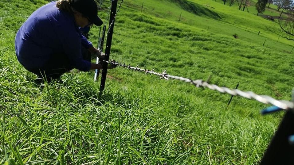 Blazeaid volunteer fixing a fence.