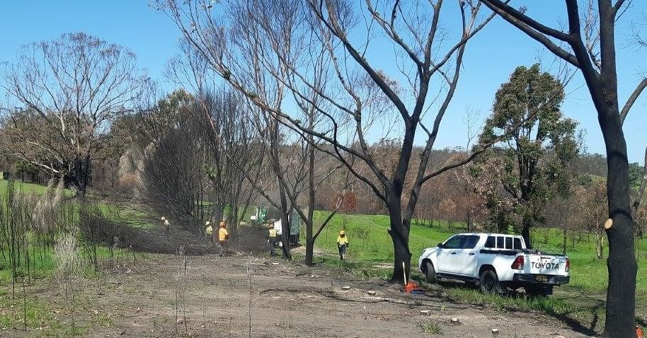 Works clearing damaged vegetation at the Cobargo Cemetary.