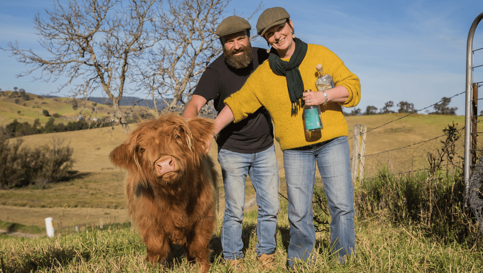 North of Eden gin distillery owners Gavin Hughes and Karen Touchie with their furry highland cow Flora.