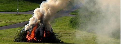 A pile of vegetation being burnt.