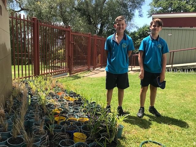 Sonny and Mason from St Patricks Primary with masses of Regrow plants ready for planting in bushfire impacted gardens.