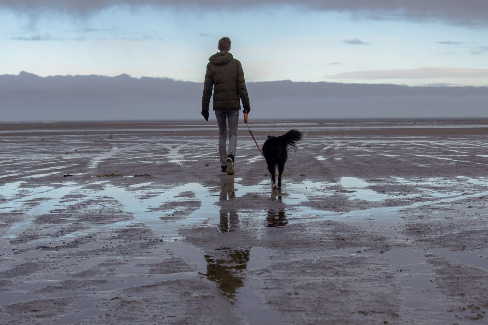 Man walking dog on beach.