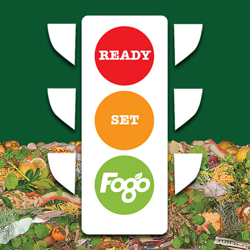Ready, set, FOGO