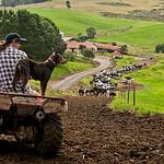 Organic Farming & Chemical Sensitivities