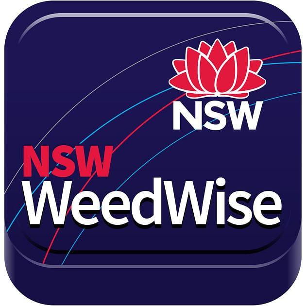 Logo WeedWise app.